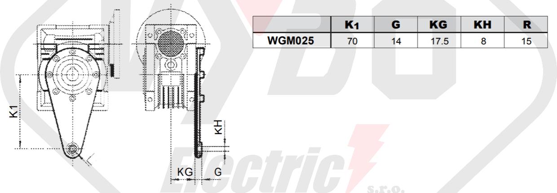 torzné rameno prevodovka wgm025
