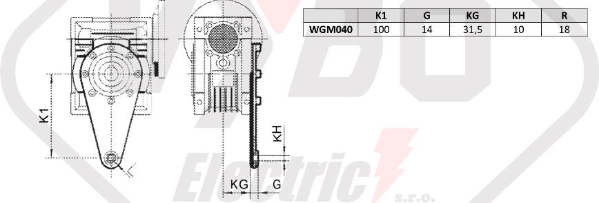 torzné rameno prevodovka wgm040