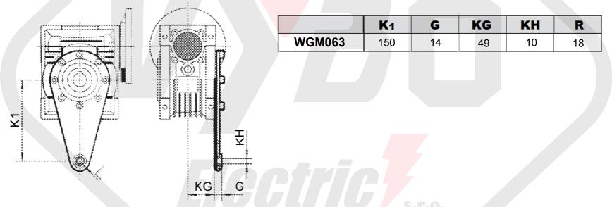 torzné rameno prevodovka wgm063