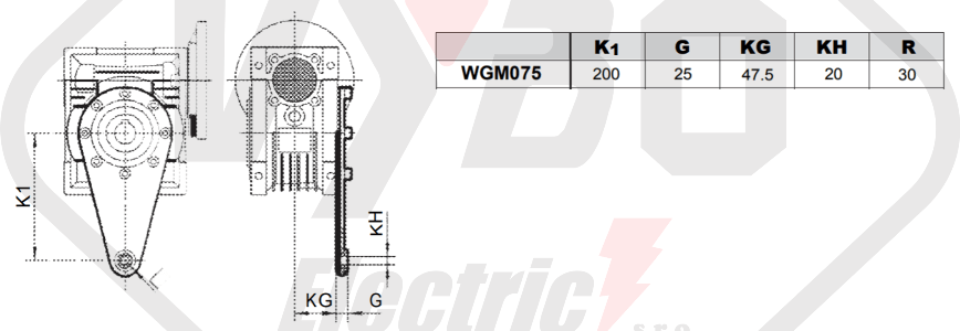 torzné rameno prevodovka wgm075