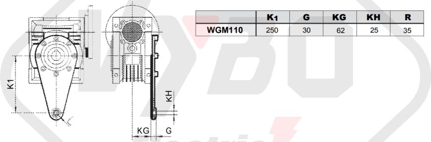 torzné rameno prevodovka wgm110